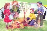 בורא פרי העץ